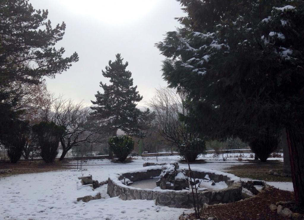 Argo con la neve (giardino)